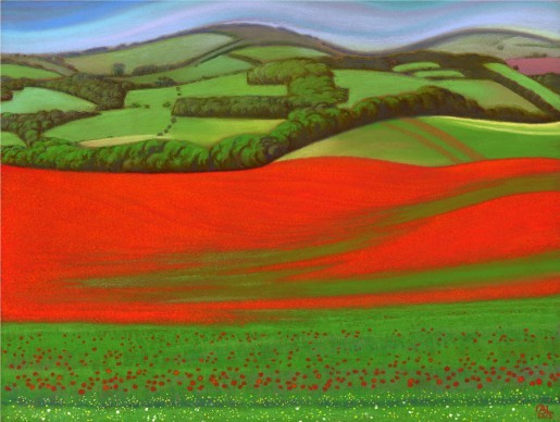 Poppy Fields at Falmer 2013