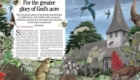 An illustration for countrylife magazine on wildlife to be found in a typically English churchyard
