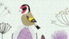 Goldfinch and seed heads