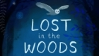 'Lost In the Woods' Book cover illustration commissioned by Lorraine Margaret.  Created in Photoshop and used by own handwritten typeface.